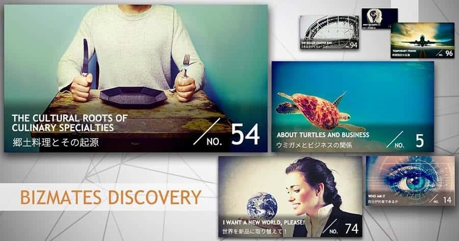 Bizmates Discovery(ビズメイツディスカバリー)