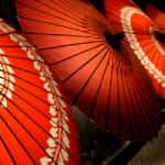 洋書多読におすすめ!日本文化を英語で紹介するなら必読の書8選