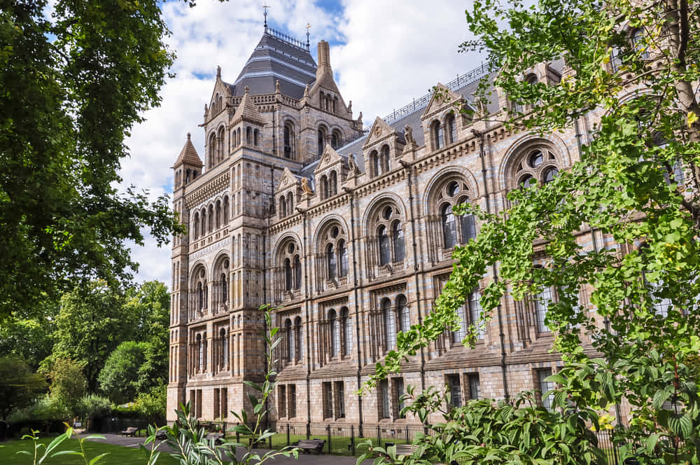 Side part of Natural History Museum building in London, United Kingdom